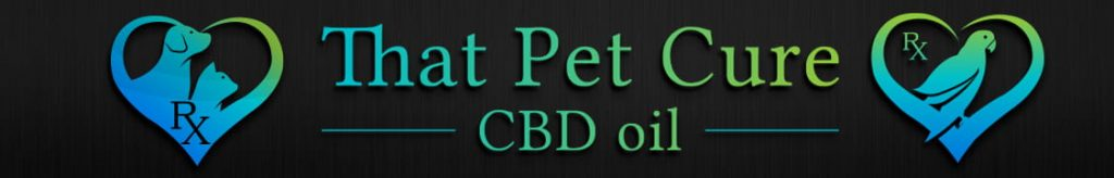 Pet CBD For Sale New York, CBD For Dogs, That Pet Cure